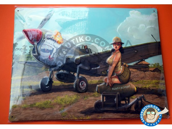 Image 5: Curtiss P-40 Warhawk N | Airplane kit in 1/32 scale manufactured by Eduard (ref. 11104)