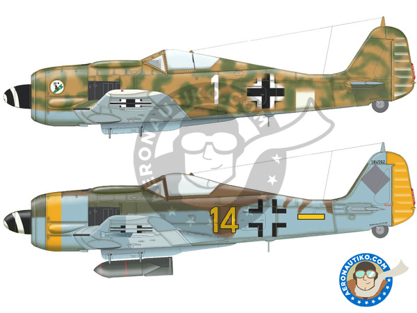 Image 5: Focke-Wulf Fw 190 Würger F-8 | Airplane kit in 1/72 scale manufactured by Eduard (ref. 70119)