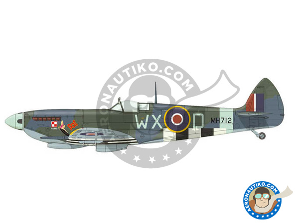 Image 4: Supermarine Spitfire Mk. IXc late | Airplane kit in 1/72 scale manufactured by Eduard (ref. 70121)