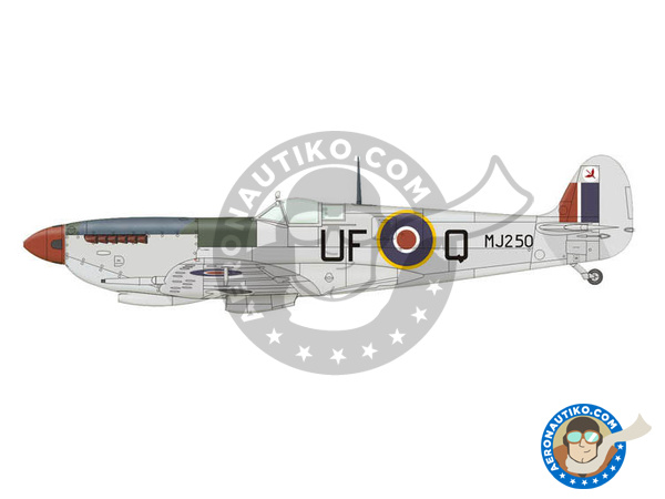 Image 5: Supermarine Spitfire Mk. IXc late | Airplane kit in 1/72 scale manufactured by Eduard (ref. 70121)