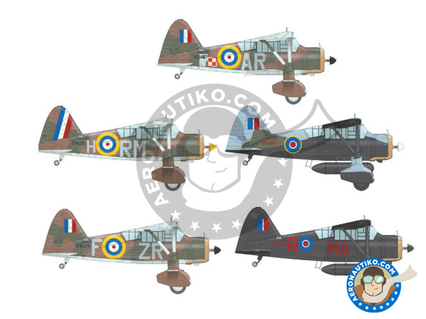 Image 2: Westland Lysander Mk III | Airplane kit in 1/48 scale manufactured by Eduard (ref. 8290)