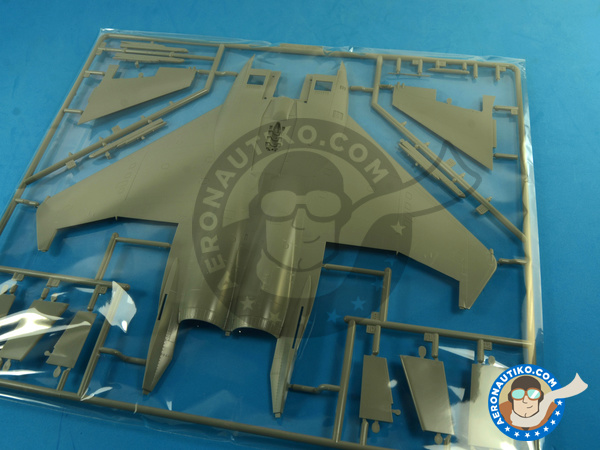 Image 16: McDonnell Douglas F-15 Eagle C MSIP II | Airplane kit in 1/48 scale manufactured by Great Wall Hobby (ref.S4804)