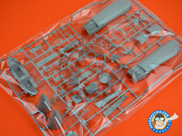 Image 1: McDonnell Douglas F-15 Eagle C | Airplane kit in 1/48 scale manufactured by Great Wall Hobby (ref.S4806)