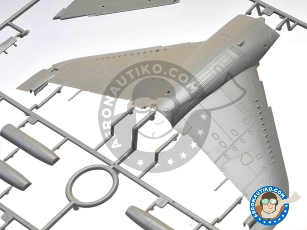 Image 3: T-Harrier | Airplane kit in 1/48 scale manufactured by Kinetic Model Kits (ref.K48040)