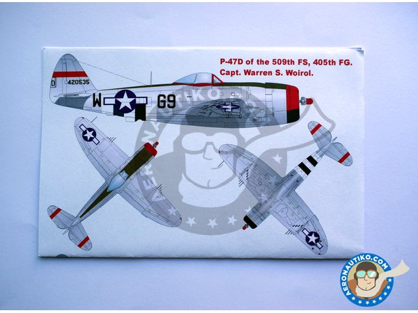 Image 3: Republic P-47D Thunderbolt | Masks in 1/48 scale manufactured by Montex Mask (ref. K48059)