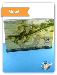 Aeronautiko newsletters - Page 2 L4803