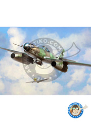 Hobby Boss: Airplane kit 1/48 scale - Messerschmitt Me 262 Schwalbe A-2a/U2 - plastic parts, water slide decals and assembly instructions