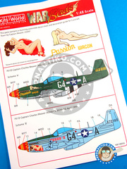 Kits World: Marking / livery 1/48 scale - North American P-51 Mustang D - 1944 (US7); April 1945 (US7) - 362nd FS, 357th FG 1944 and 1945 - water slide decals and painting instructions - for Airfix reference A05131