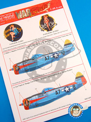 Kits World: Marking / livery 1/48 scale - Republic P-47 Thunderbolt D - water slide decals and placement instructions - for all kits