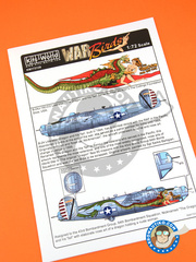Kits World: Marking / livery 1/72 scale - Consolidated B-24 Liberator J - USAF (US7) - Guadalcanal 1944 - water slide decals and assembly instructions - for Hasegawa reference 01559