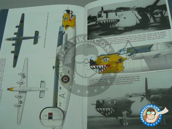 Image 15: B-24 Liberator Riders in the Sky 1945 | Airplane kit in 1/72 scale manufactured by Eduard (ref. 2123)