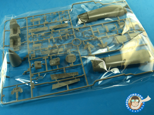 Image 5: McDonnell Douglas F-15 Eagle B / D | Airplane kit in 1/48 scale manufactured by Great Wall Hobby (ref. L4815)