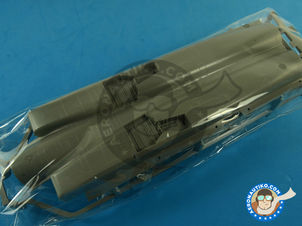 Image 2: McDonnell Douglas F-15 Eagle C MSIP II | Airplane kit in 1/48 scale manufactured by Great Wall Hobby (ref. S4804)
