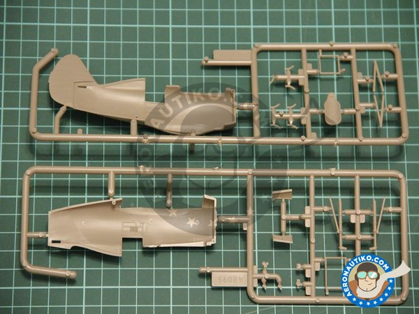 Image 5: I-153 Winter Version | Airplane kit in 1/48 scale manufactured by ICM (ref. 48096)