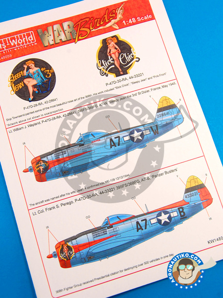 Republic P-47 Thunderbolt D | Marking / livery in 1/48 scale manufactured by Kits World (ref. KW148059) image