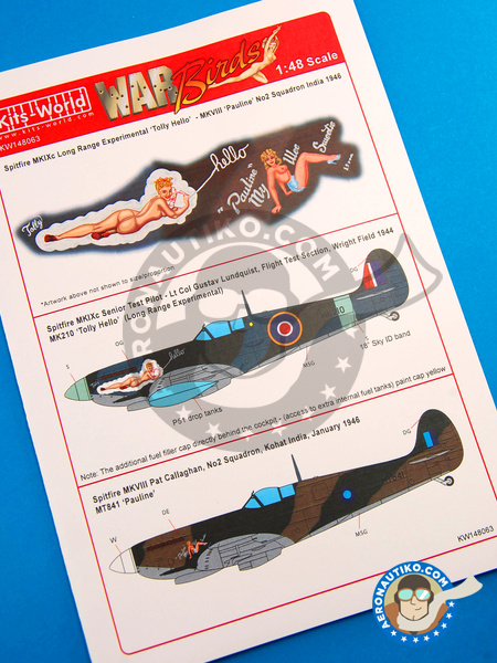 Supermarine Spitfire Mk VIII - Ixc | Marking / livery in 1/48 scale manufactured by Kits World (ref. KW148063) image